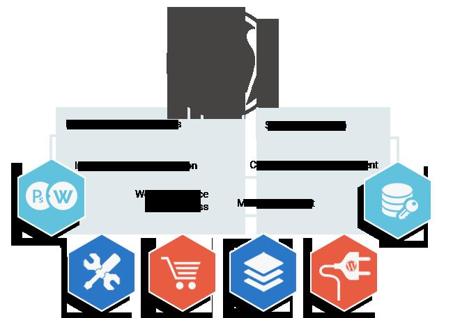 Wordpress Development in Dehradun